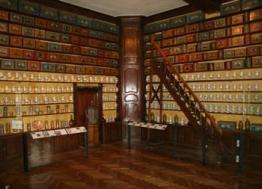 Troyes : quatre musées gratuits jusqu'au 31 mars