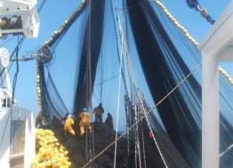 La société Le Drezen implante son atelier son atelier de préparation de câbles à Lorient-Keroman