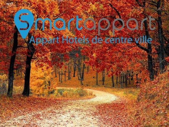 L'automne en France