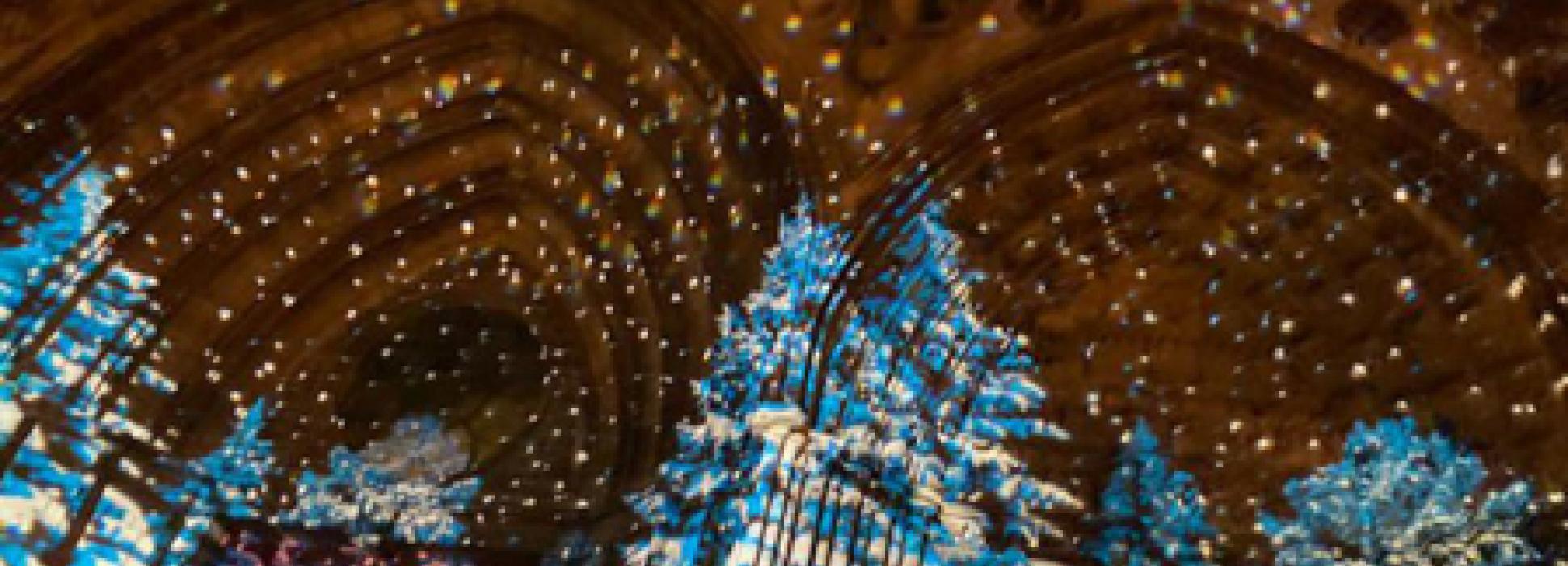 Calvados : deux tableaux sont projetés sur la cathédrale Notre Dame de Bayeux jusqu'au 3 janvier 2021