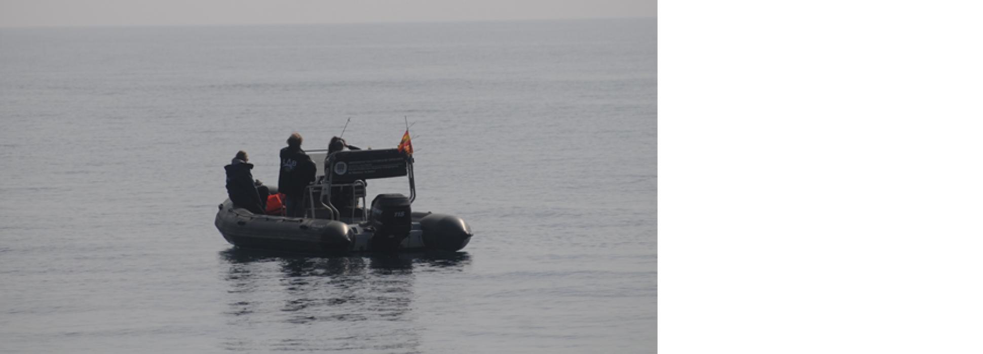 Smartappart contribuye a la conservación de la biodiversidad marina