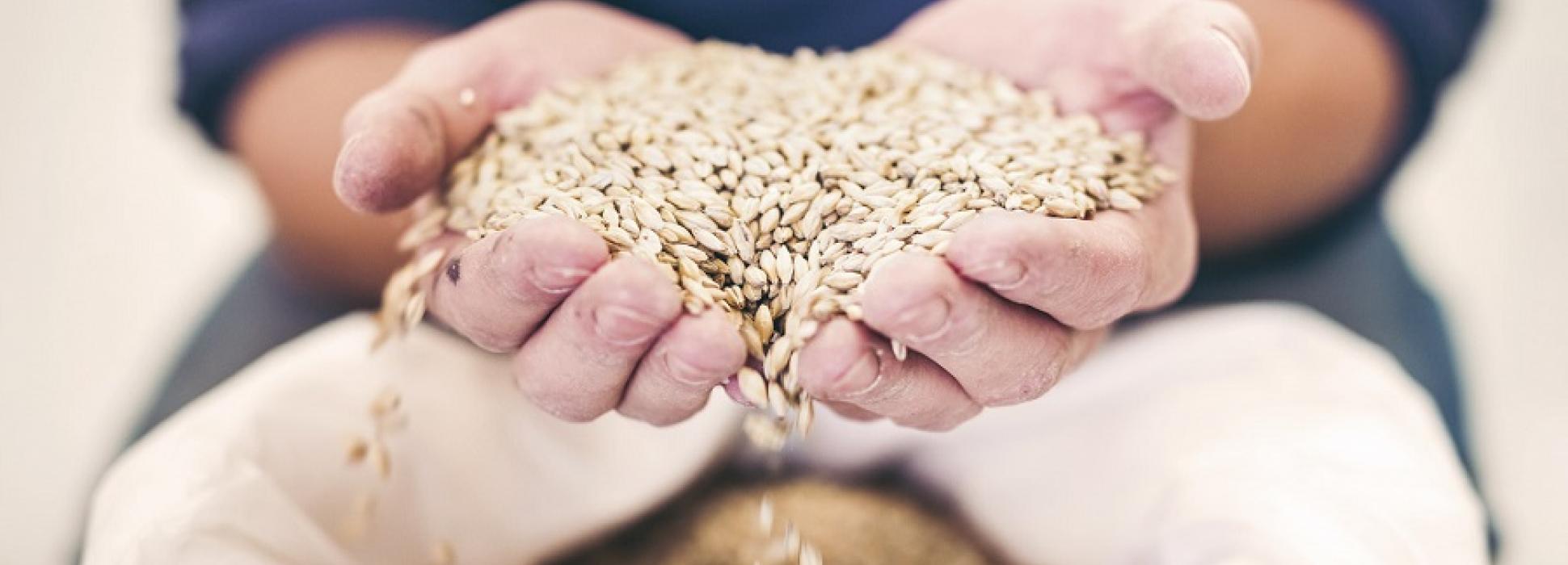 Le groupe agroalimentaire Soufflet renforce son action pour l'environnement
